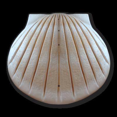 Kagyló formájú, lebomló urna hajós temetéshez - homokszínű